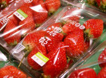 観光客に大人気の果物